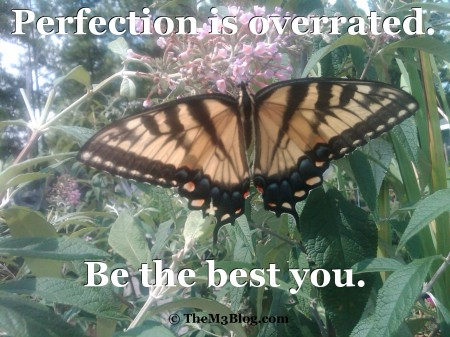 Perfection Butterfly