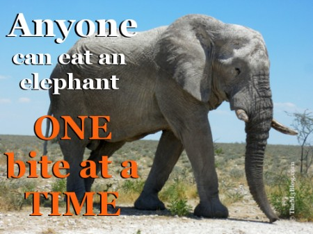 Anyone can eat an elephant