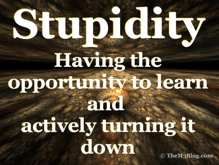 Stupidity definition