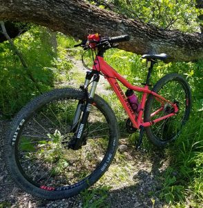 pink Cannondale mountain bike